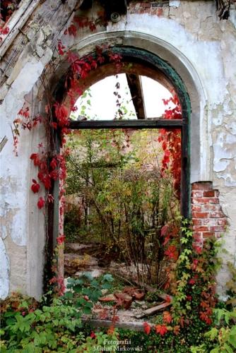 Ruiny dworku w Bartodziejach widziane z perspektywy otworu okiennego