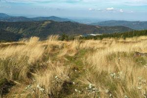 Jesienna panorama gór Beskidu Śląskiego.