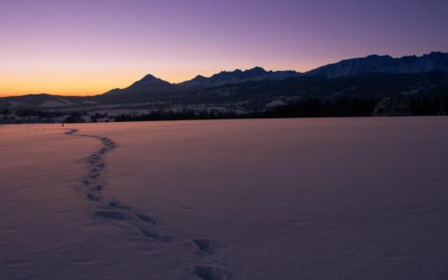 Pojedyncze ślady ludzkie odciśnięte w śniegu na rozległej polanie, w oddali panorama Tatr o zachodzie słońca.